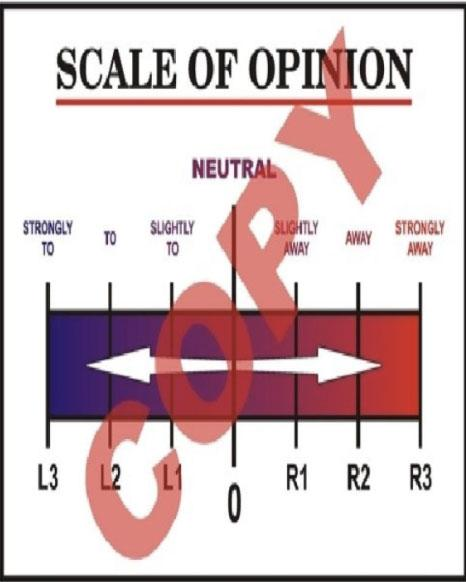 Scale of Opinion